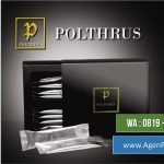 Reseller POLTHRUS Original | Ramuan Kejantanan  Untuk Laki-laki Perkasa di Pejagalan, Kec. Penjaringan – Jakarta Utara